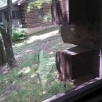 Hole in the screened porch