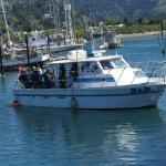 Visboten & tours