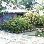 This is the pool and Breadfruit Cottage