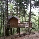 la cabane Epicea