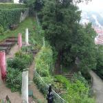 Wunderschöne Terrasse