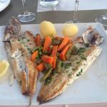 Food - Restaurante Las Olas Photo