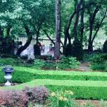 Garden Lamb's Rest