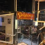 GayLord India