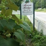Acorn Ridge B&B