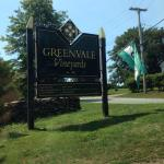 A Day at Greenvale