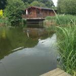 Fishing View 2