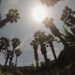 Landscape - Samsung Hotel Geoje Photo
