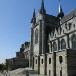 Collégiale Sainte-Waudru - Mons, vue latérale