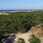 Photo de Province Lands Visitor Center