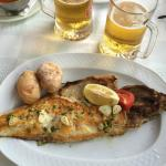 My fish platter