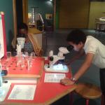 Microscope station