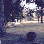 Foto van Glenwood Golf Course and Resort