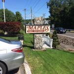 Maples