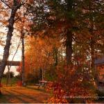 Sunsets in the fall are incredible at Cozy Cove Cabins