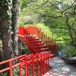 110 Acres of Botanical Gardens at Dow Gardens