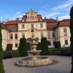 Zamek Jemniste