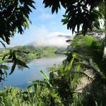Morning on the Daintree River