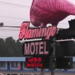 Foto de Flamingo Motel & Suites