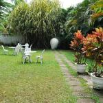 feel natural miracle in our garden area.....