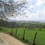 Praderas junto a la vía verde