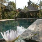 Ubud Inn Foto