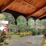 The view from verandah