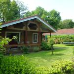 Fins chalet met sauna Hooge Holt