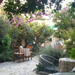 Very nice garden.