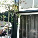 Bosrestaurant Joppe