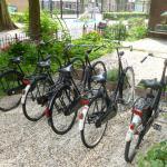 Bed & Bike Alberti Foto