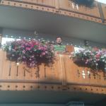 Flowers in every balcony & window