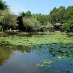 Kiln gardens pond and pavillion