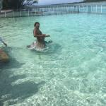 Un posto unico dove abbiamo nuotato tra squali e mante! In una vasca sono presenti anche due bel