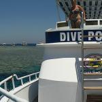 Dive Point