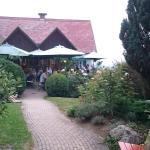 Steinberghof Weingut Firmenich