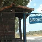 Photo of Bakkhos Guesthouse
