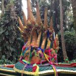 Kham Chanod Forest