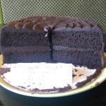 Gluten Free Alabama Fudge Cake