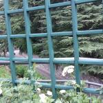 Pienzenau am Schlosspark Foto