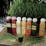 Fresh and healthy fruit juices or wheatgrass shot ? Any of these can assure you of great health