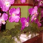 Les fleurs de plastique sont plantées dans le styromousse