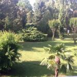 View of the gardens from the room's balcony