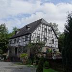Pyrmonter Mühle의 사진