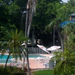 Foto de Magnuson Hotel Marina Cove