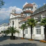 Saxifraga Kurhaus Foto