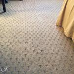 torn carpet ( why ) have some pride in your hotel !!!