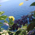 La Locanda del Fiordo Foto