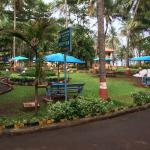 The resort landscaping
