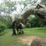 Lost in the Jurassic world.